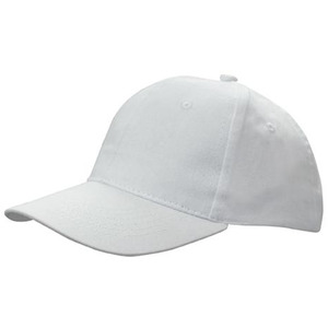 6PNL Brushed Cotton Cap